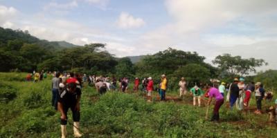 Nuevo informe FAO-CEPAL propone medidas para impedir una crisis alimentaria